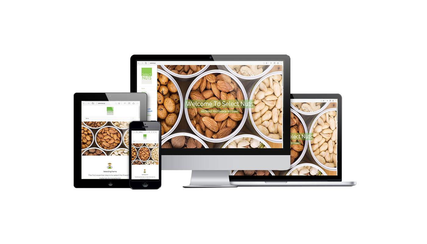 Κατασκευή Website Εισαγωγικής Εταιρείας